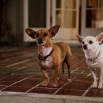 beverly-hills-chihuahua-2-poster